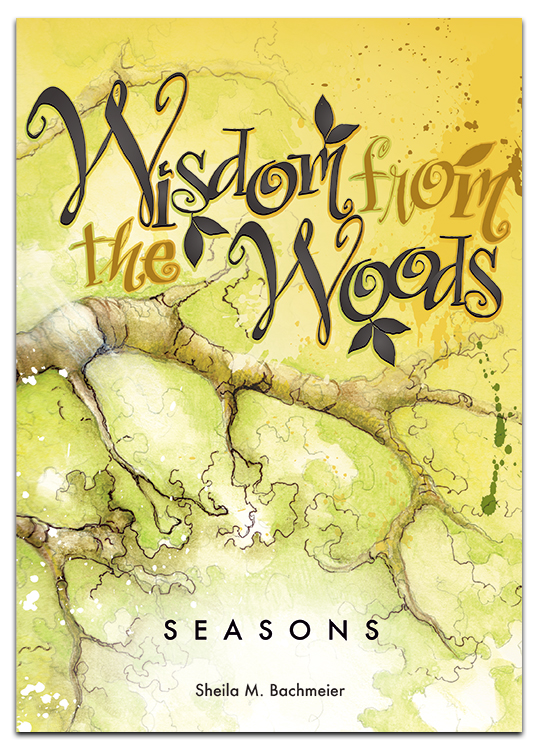 Wisdom from the Wood by Sheila Bachmeier book cover